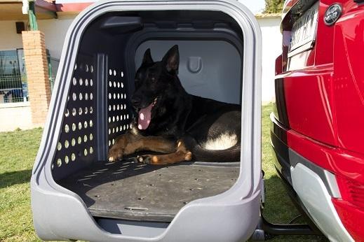 portaperros-towbox-v2-dog-gris-10