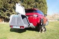 portaperros-towbox-v2-dog-gris-11
