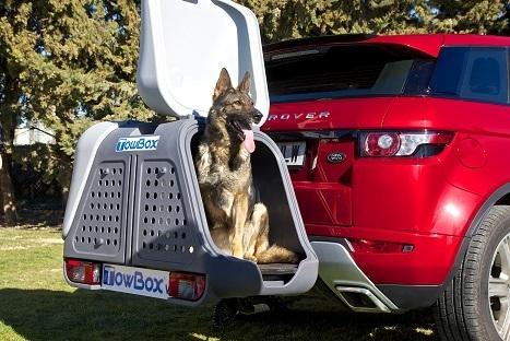 portaperros-towbox-v2-dog-gris-4
